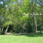 Plage en herbe de Vioreau
